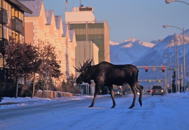 Anchorage-Alaska-26